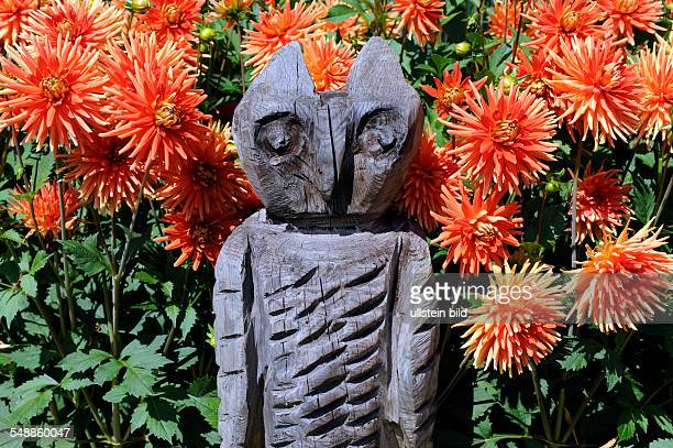 art and crafts owl in front of red dahlias