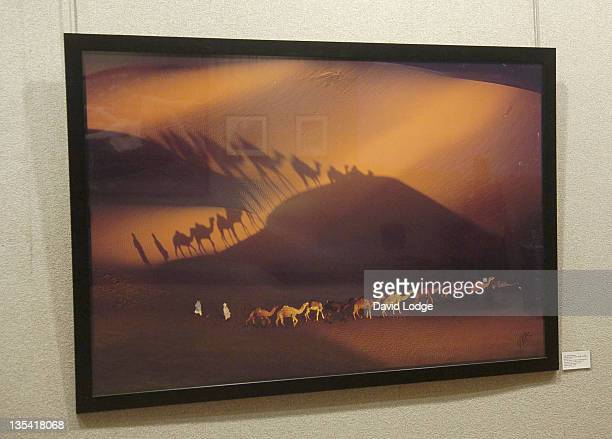 Art by Yann Arthus-Bertrand at the Love at First Sight - Reception and Auction, in aid of the charity ORBIS, which tackles the prevention of...