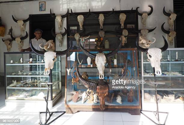 Art carvings from the head of buffalo works from I Gede Parna are displayed in a souvenir shop in Gianyar Bali Indonesia on May 23 2018 The price of...