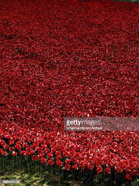 Art installation titled at the Tower of London 'Blood Swept Lands and Seas of Red' The dry moat was filled with 800000 ceramic poppies commemorating...