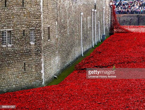 Art installation titled at the Tower of London 'Blood Swept Lands and Seas of Red'. The dry moat was filled with 800,000 ceramic poppies...