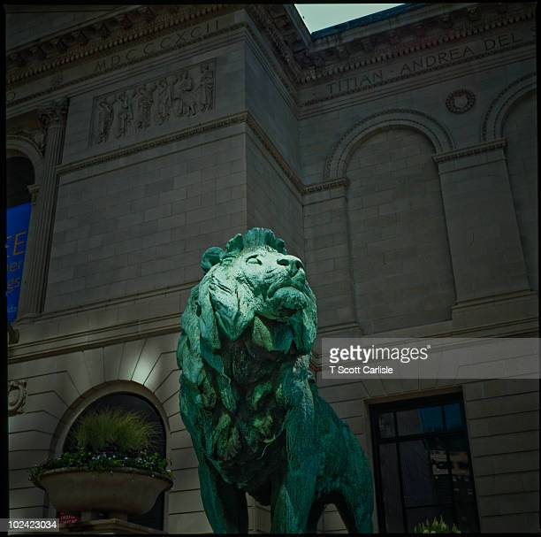 art institute - bronze lion - art institute of chicago stock pictures, royalty-free photos & images