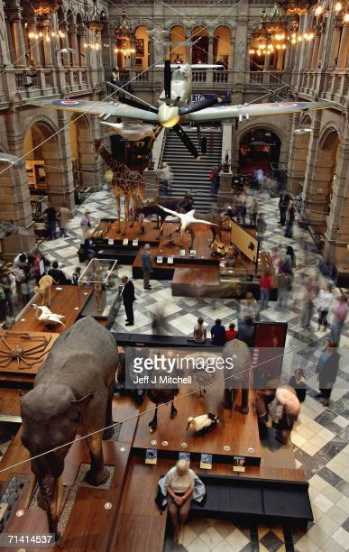 Art lovers look at exhibits at the Kelvingrove Art Gallery and Museum on July 11 2006 in Glasgow Scotland The gallery reopened today after a three...