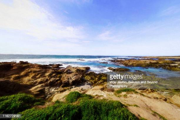 art of the coastline near pebble beach, california - monterey peninsula stock pictures, royalty-free photos & images