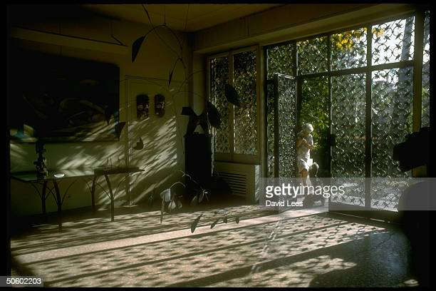 Art patron Peggy Guggenheim at her artfilled palazzo standing outside opening in glass/iron wall w her beloved Shih Tzus