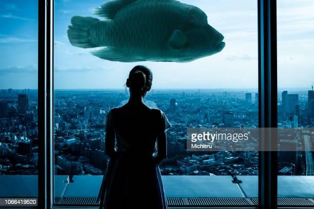 art photo - a girl, fish, city - aquatisches lebewesen stock-fotos und bilder