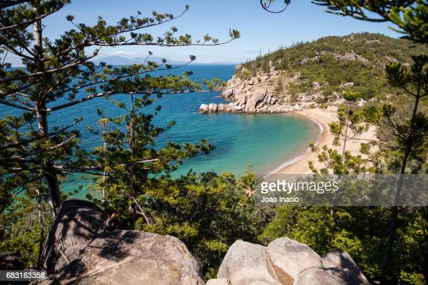 arthur bay, magnetic island, queensland, australia - townsville queensland stock pictures, royalty-free photos & images