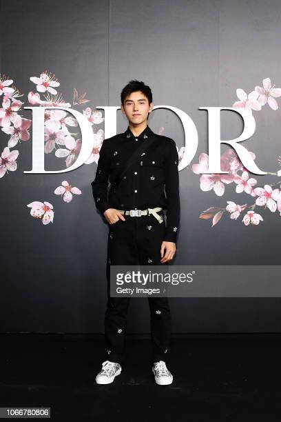 Arthur Chen attends the photocall at the Dior Pre Fall 2019 Men's Collection on November 30, 2018 in Tokyo, Japan.