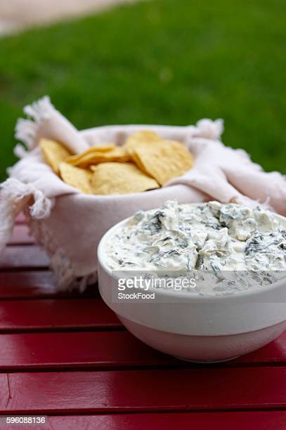 Artichoke Dip and Chips on an Outdoor Table