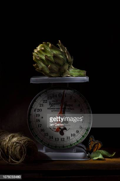 artichoke on scale - ian gwinn stockfoto's en -beelden
