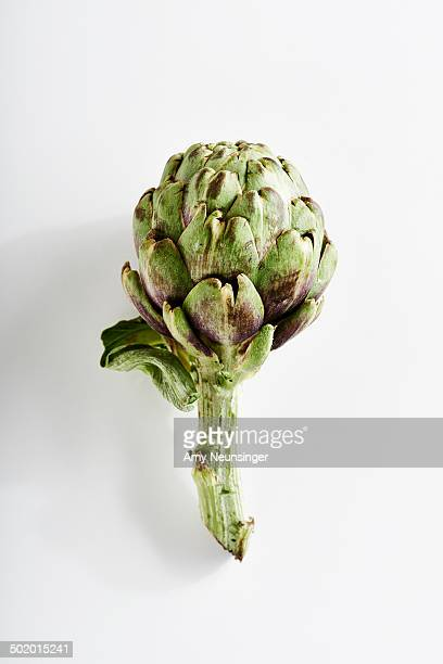 Artichoke on white background.