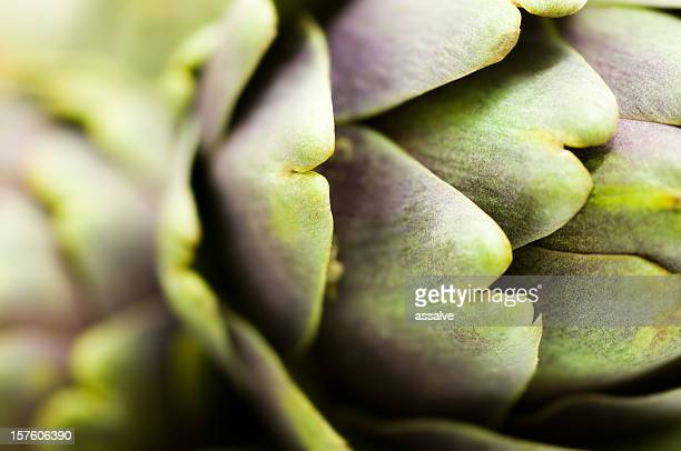 artichoke - extreme close up stock pictures, royalty-free photos & images