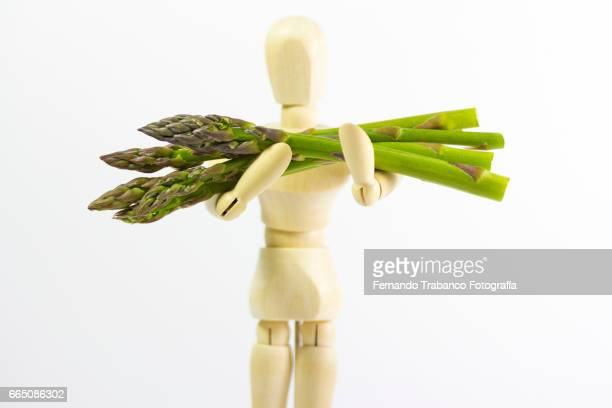 Articulated doll holding green asparagus