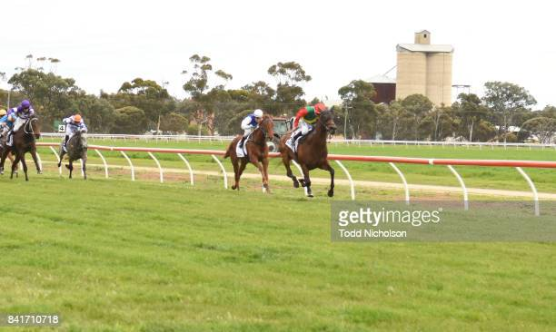 P'artie Town ridden by Daniel Moor wins the Ladbrokes Up For The Challenge Maiden Plate at Warracknabeal Racecourse on September 02 2017 in...