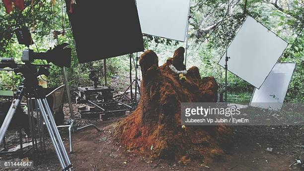 artificial anthill surrounded by photographic equipment  - film set stock pictures, royalty-free photos & images