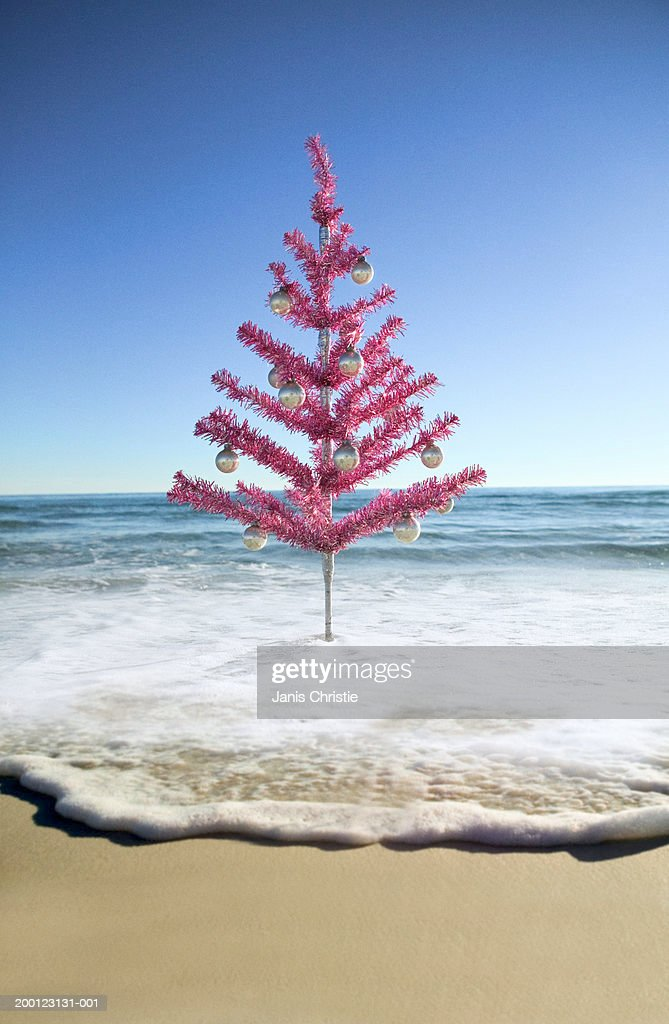Artificial Christmas Tree On Beach High-Res Stock Photo ...