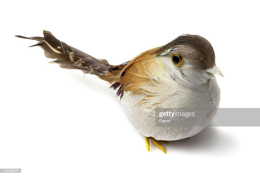 Artificial feather birds : Stock Photo