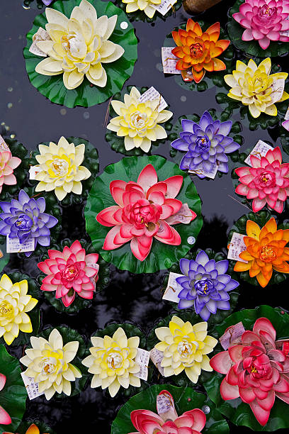 Artificial flowers floating on fish pond at Jade Buddha Temple.