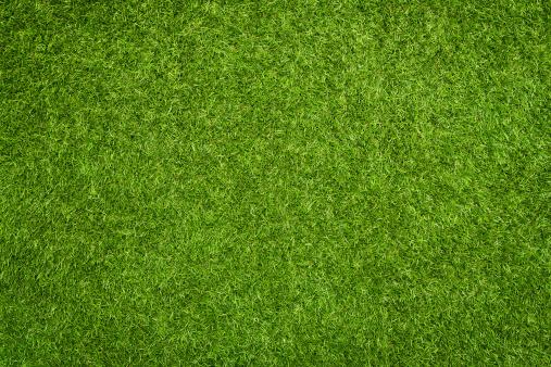 Artificial grass 506692747