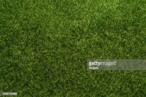 artificial grass texture - grass stock pictures, royalty-free photos & images