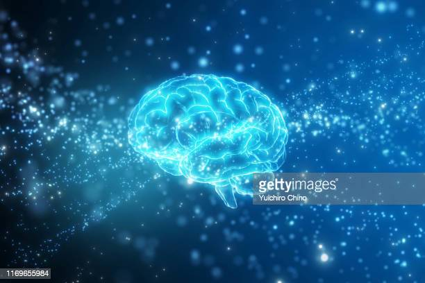 artificial intelligence brain network - human brain stock pictures, royalty-free photos & images