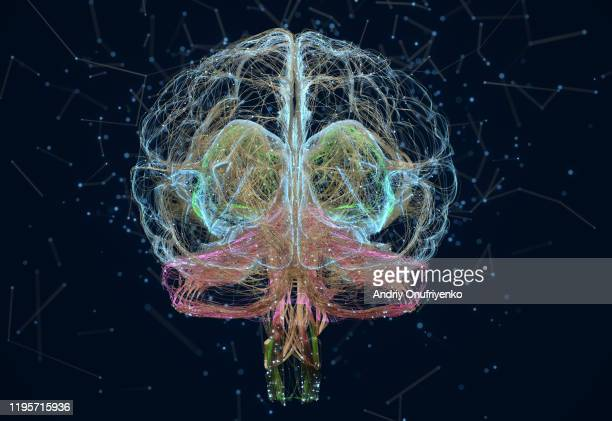 artificial intelligence brain - scientificsubjects stock pictures, royalty-free photos & images