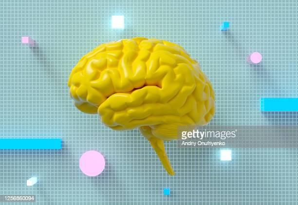 artificial intelligence brain - hjärna bildbanksfoton och bilder