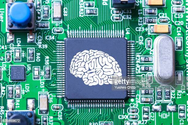 artificial intelligence concept - cerebrum stock photos and pictures