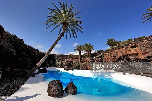 Artificial pool in the Jameos del Agua, in the lava field of the Volcan de la Corona, Lanzarote, Canary islands, canaries, spain.
