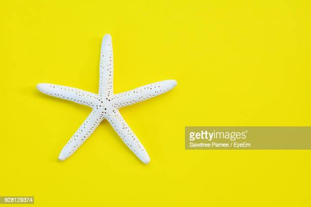 artificial starfish on yellow background - starfish stock pictures, royalty-free photos & images