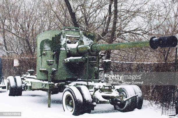 artillery and snow in vladivostok fortress - artillery stock pictures, royalty-free photos & images