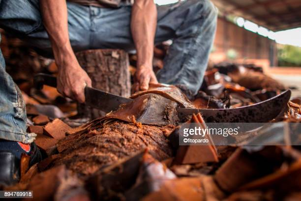 artisan mezcal in oaxaca - machete stock pictures, royalty-free photos & images