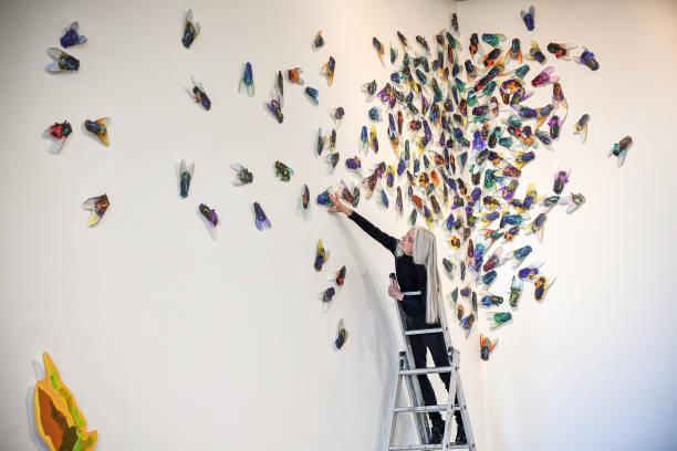 GBR: 'Botanist's Daughter' Exhibition Opens At Edinburgh Printmakers Gallery