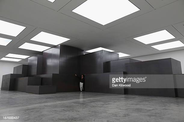 Artist Anthony Gormley stands beside an installation entitled 'Model' during a press preview of his new work at the White Cube Gallery in Bermondsey...