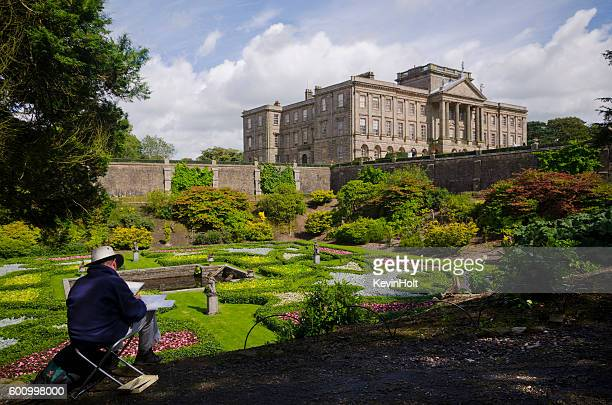 artist at lyme park,cheshire. - botany stock pictures, royalty-free photos & images
