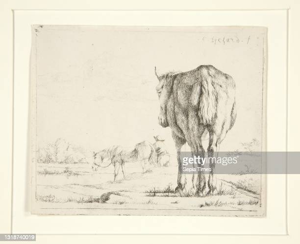 Charles Echard, French, 1748-1810, Two Horses Grazing, ca. 1780–90, Etching, platemark: 9.1 × 11.1 cm , French, 18th century, Works on Paper - Prints.