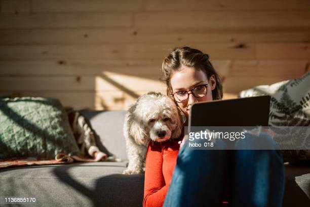 artist drawing at home in company of her poodle dog - computer foto e immagini stock