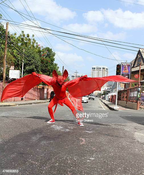 Artist Richard Mark Rawlins masquerades in the band 'Suck It' by Cat in Bag Productions during the Carnival Parade at the Trinidad Carnival on March...