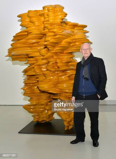 Artist Tony Cragg poses for a photograph alongside one of his works at the Museum d'Art Moderne in SaintEtienne on November 18 2013 in Lyon France
