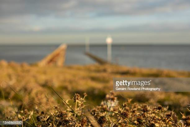 artist view of the south east of england - southend on sea stock pictures, royalty-free photos & images