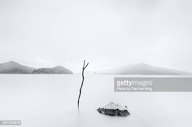 Artistic image of peaceful reservoir in Hong Kong with a stick and rock staying still in the water