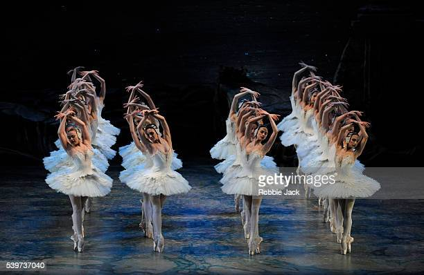 """Artists of the company in American Ballet Theatre's production of """"Swan Lake"""" at the London Coliseum."""