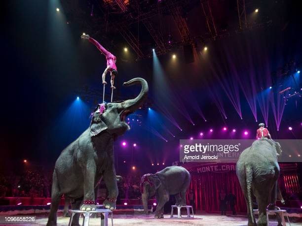 Artists perform during the 43rd International Circus Festival of MonteCarlo on January 19 2019 in Monaco Monaco