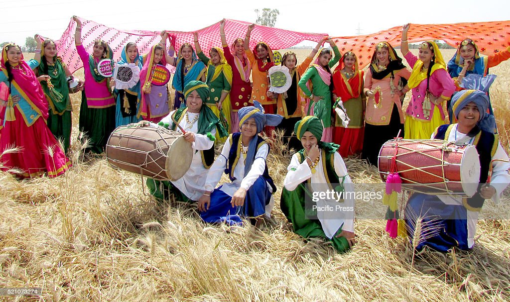 Artists perform the `Bhangra` a Punjabi folk dance in a filed of wheat at village Reethkheri Sirhind road Baisakhi is the festival of the first...