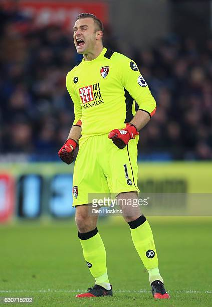 Artur Boruc of AFC Bournemouth celebrates his team's first goal during the Premier League match between Swansea City and AFC Bournemouth at Liberty...