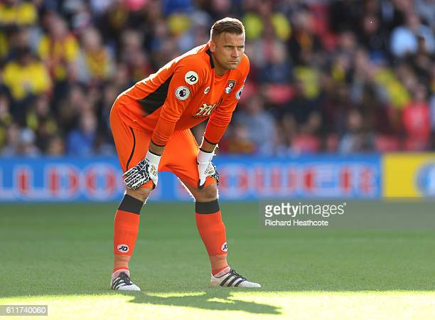 Artur Boruc of AFC Bournemouth in action during the Premier League match between Watford and AFC Bournemouth at Vicarage Road on October 1 2016 in...