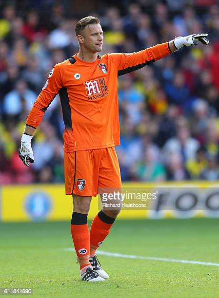 Artur Boruc of AFC Bournemouth in action in action during the Premier League match between Watford and AFC Bournemouth at Vicarage Road on October 1...