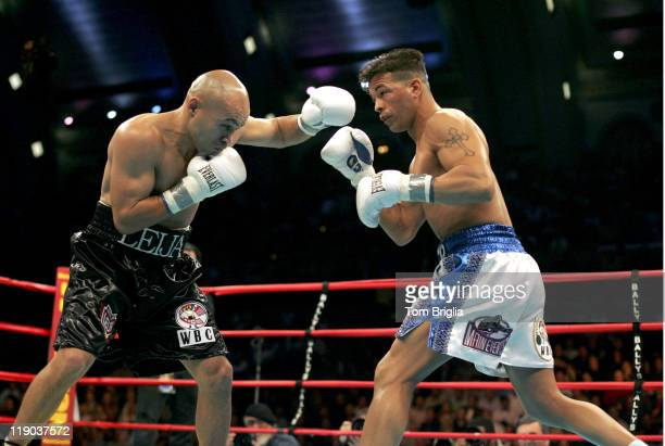 Arturo Gatti and Jesse James Leija during the fight on January 29 2005 at Boardwalk Hall in Atlantic City
