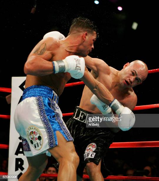 Arturo Gatti connects with a left on Jesse James Leija during their bout for the WBC Super Lightweight Championship at Boardwalk Hall on January 29...