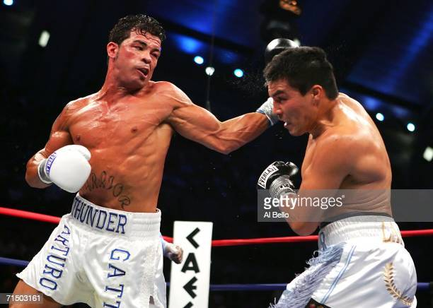 Arturo Gatti lands a left hand hook against Carlos Baldomir during their WBC/IBA Welterweight Championship fight at Boardwalk Hall July 22 2006 in...